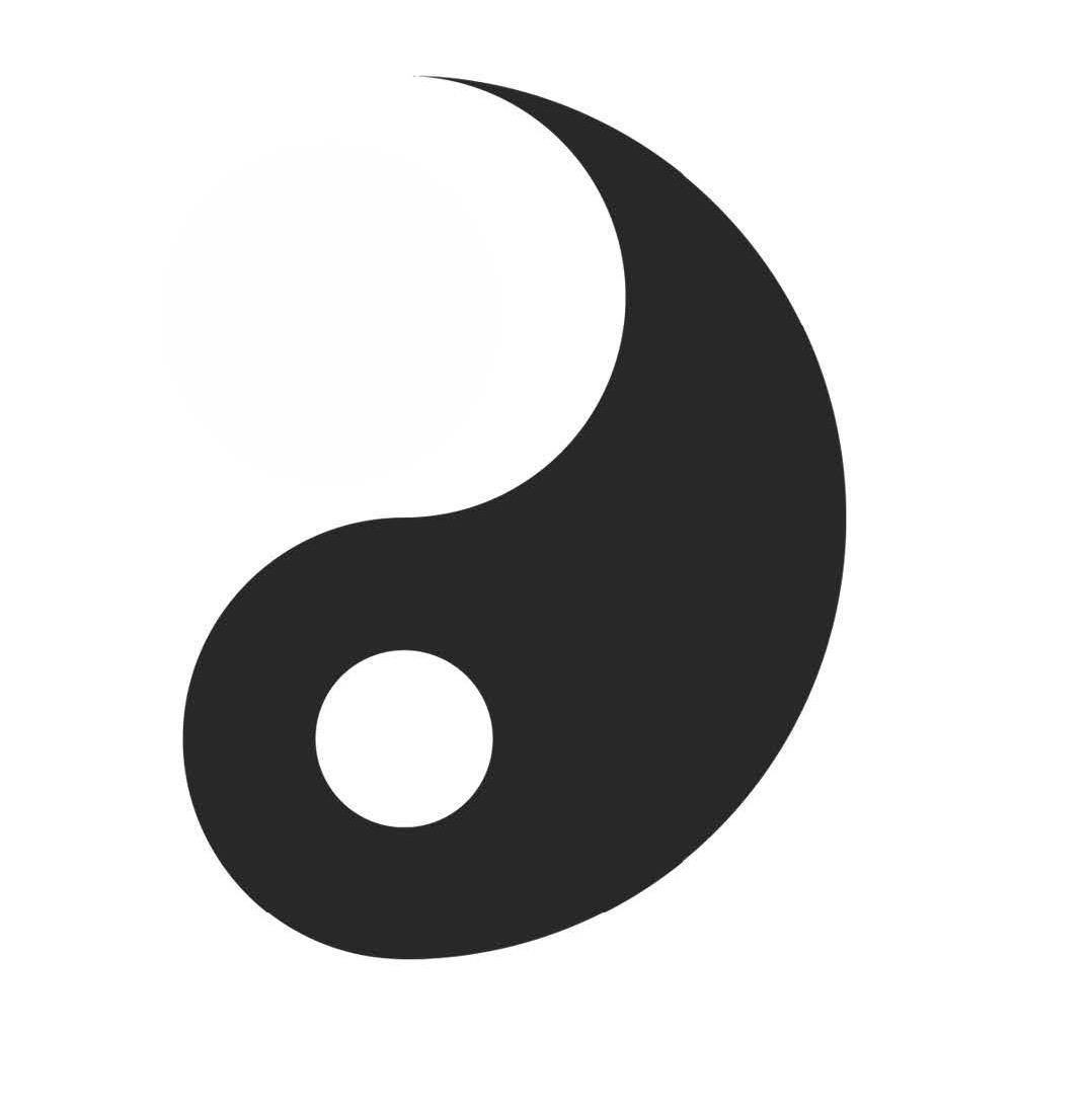 yin yang1 3